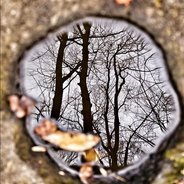 2011-11-25_1322259312.jpg