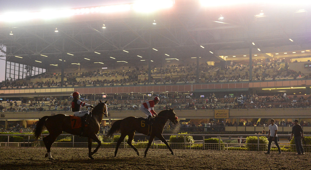 . Final day of horse racing at Hollywood Park in Inglewood, CA on Sunday, December 22, 2013. After 75 years, the famed racetrack is closing to make way for development.   (Photo by Scott Varley, Daily Breeze)