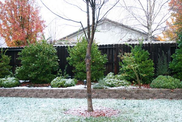 Folsom Snow