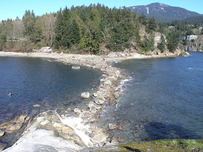 Horseshoe bay and West Vancouver waterfront walk