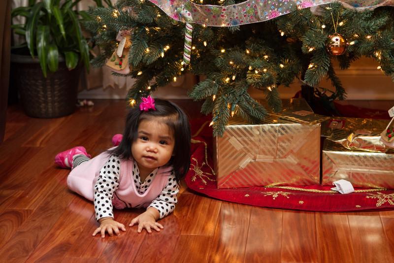 Holidays-2013-11.jpg
