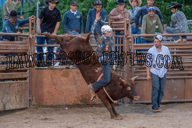 ROPE FOR WISHES   BULL BASH