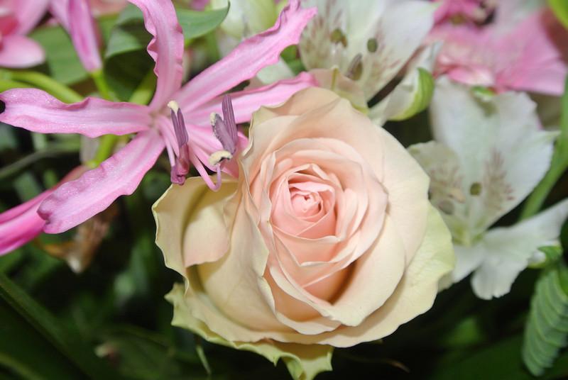 'RONNY & PASCAL' Bloemen voor Maintje 2012-11-11 13.JPG