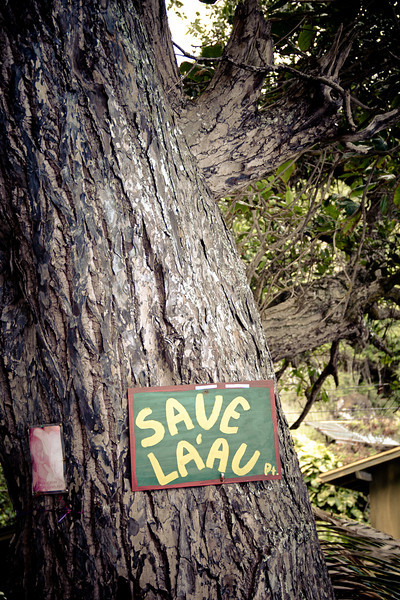 protest save laau.jpg