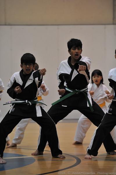 2015-12-18_HAC_KarateBeltPromotion@HockessinDE_21.jpg
