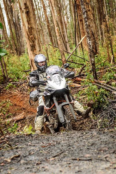 2019 KTM Australia Adventure Rallye (270).jpg