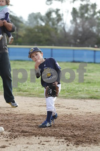 Riverdogs T-Ball