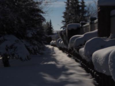 Snowfall 2337