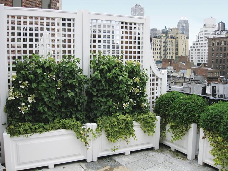 14351_rooftop Planter GW0187.jpg