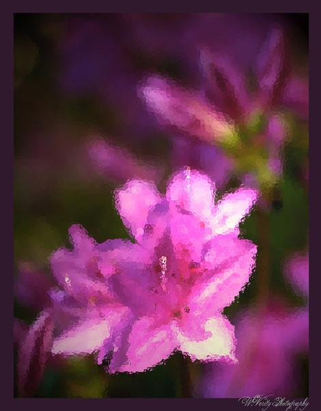 Flower BJ.jpg
