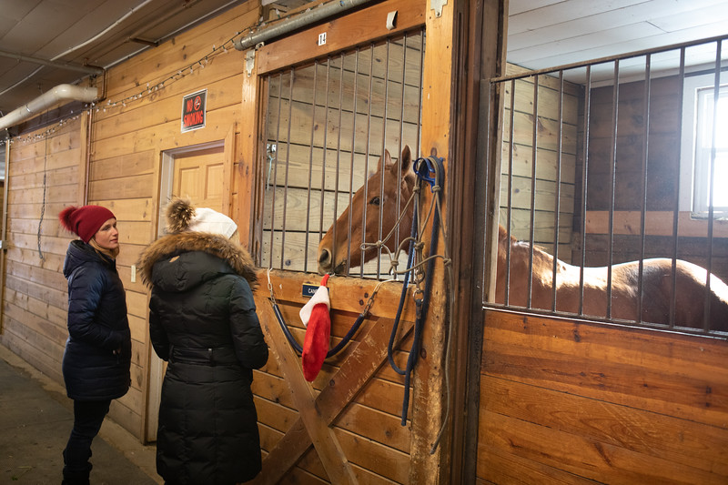 FPC_Horses and Holidays_2019_ ATC99464.jpg