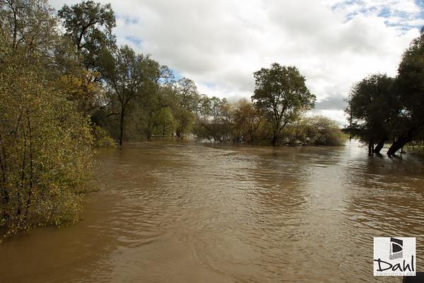 Flooding @ Dry Creek 12-2012