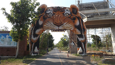 Tiger Temple Sanctuary,Thailand 2014.