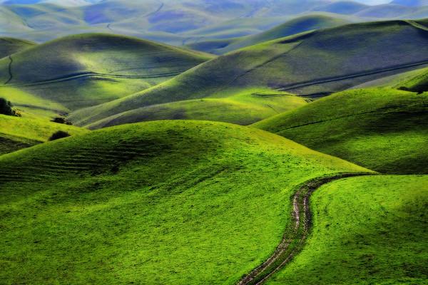 path, road, green, hills, travel, destination,