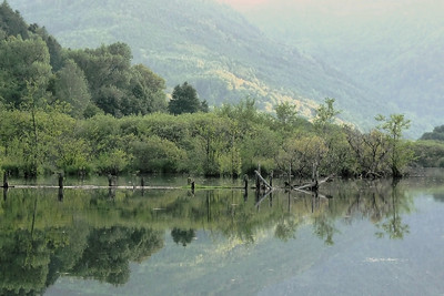 Le See d' Urbès
