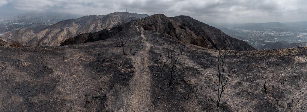 LaTuna Canyon Fire aftermath