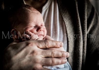 Newborn Session ~ Schmidt