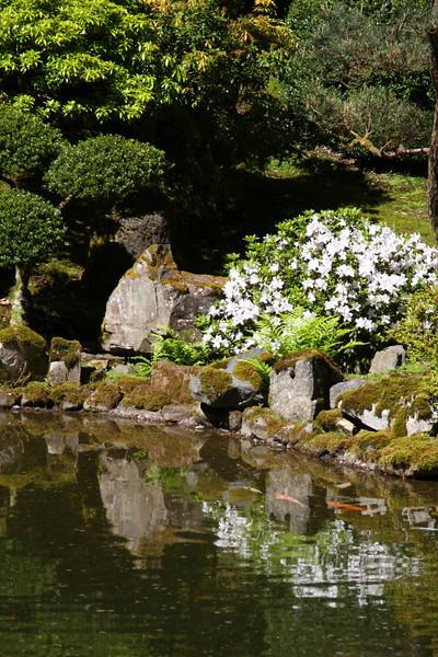 Portland Japanese Garden 6-3-11  1805.jpg