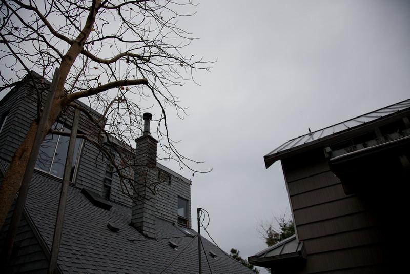 20091129-2009LotTrimming-8.jpg