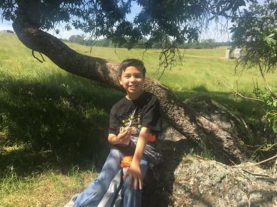 Rocklin Academy Gateway | May 4, 2018 | 4th Grade