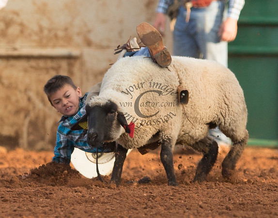 2016 Old West Fest Rodeo