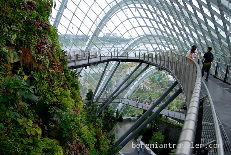 inside the Cloud Forest at Gardens by the Bay (2).jpg