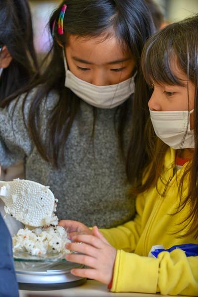 Gr1 Chiku Onigiri Making-0463.jpg