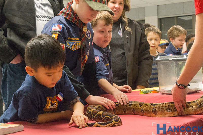 Cub Scout Blue and Gold Banquet 2018-123.jpg