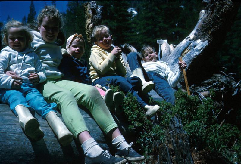 0421 - Kids (7-65).jpg