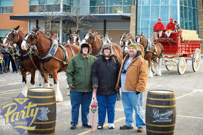 Clydesdale Portraits 141.jpg