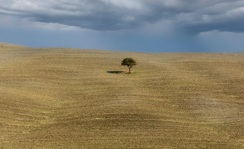 Fields of fall