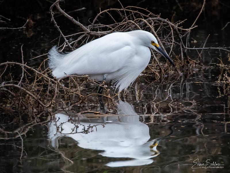 Gilbert Water Park 1-42-2019b-0223.jpg