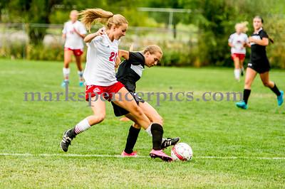 Springville Girls Soccer 2015