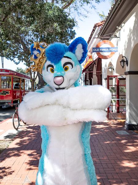 20190316-Santa Barbara Trolley Meetup 2019-3-16-118.jpg