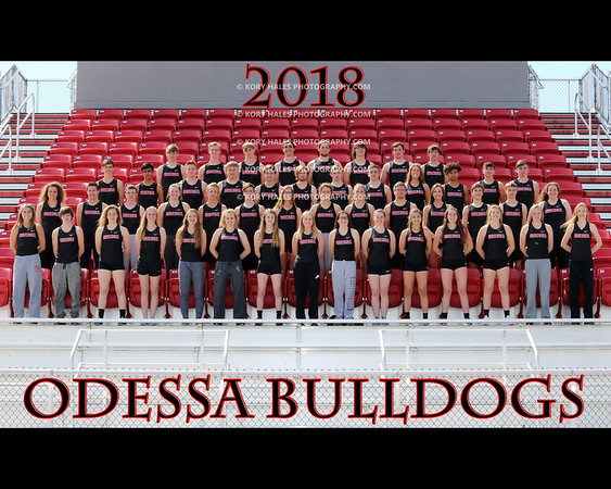 2018 OHS Track & Field