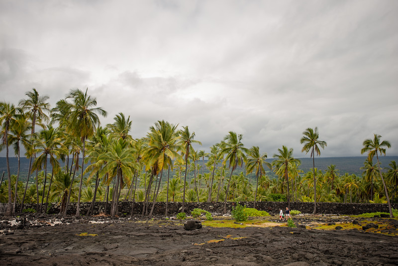 Hawaii2019-369.jpg