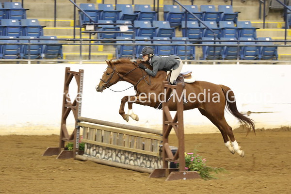 2019 Trimble's Ridge Fall Horse Show -- Morning through mid-afternoon