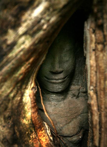 temple facesmall.jpg