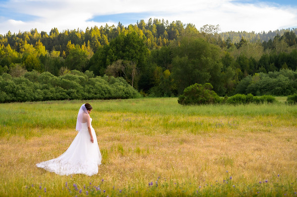 Estefani and Hubert - Bridal Formals / Family / Maternity Shoot @ Henry Cowell, Felton