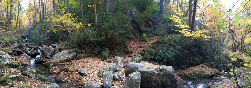 Farlow Gap Trail @ Shuck Ridge Creek -- 3,580'