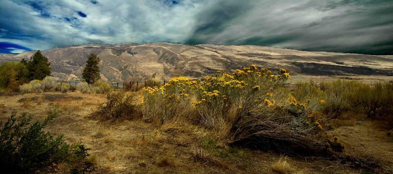 Eastern Washington & Oregon