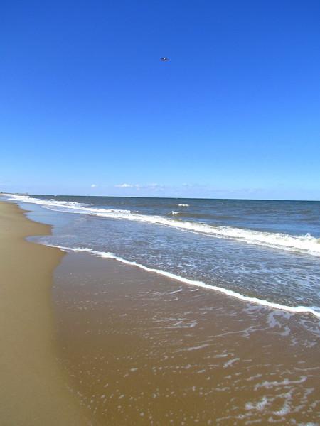 Dam Neck Beach (14).jpg
