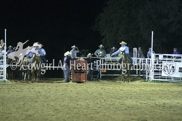 COUNTY TEAM ROPING