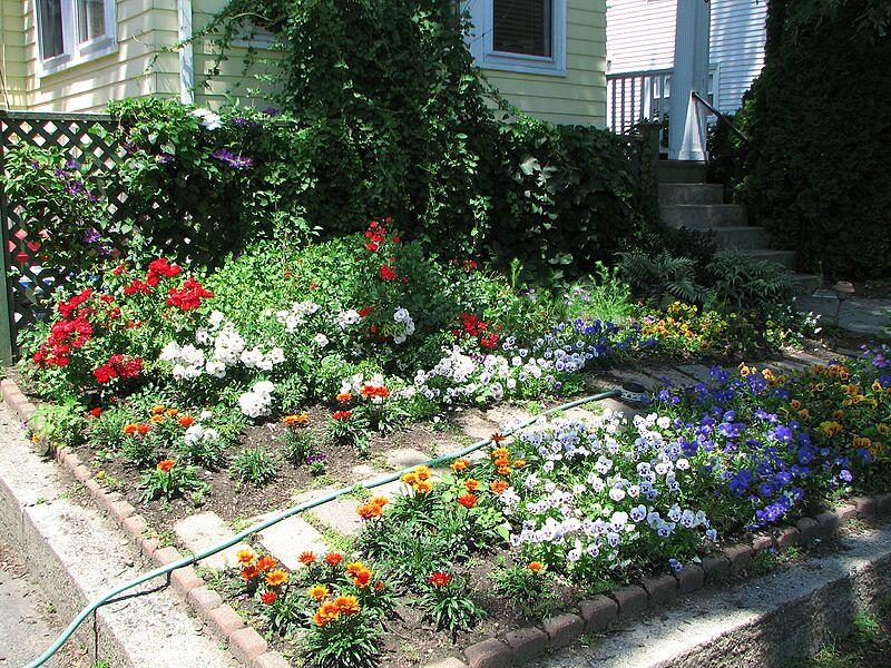 garden-2007-06-0621_std.jpg
