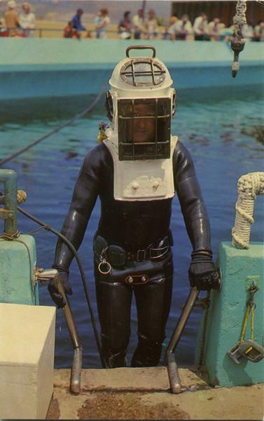 Marineland Diver