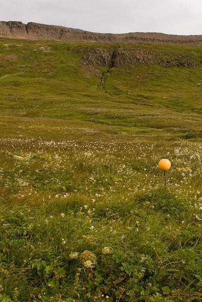 Leiðin upp í Göngumannaskörð