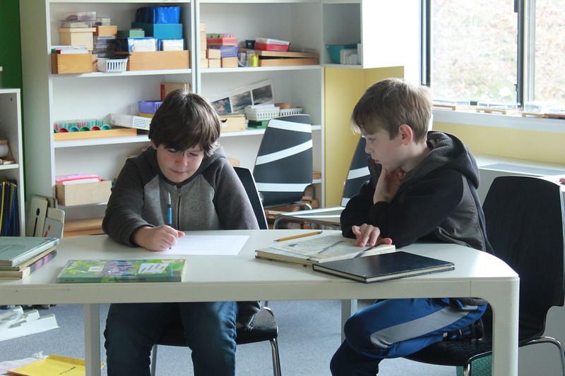 Lower Elementary Photo Literacy