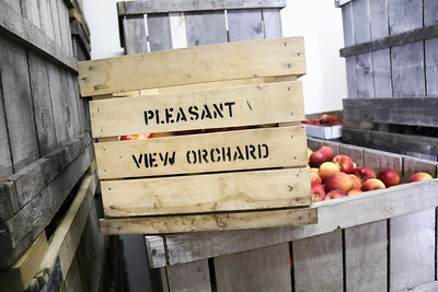 Pleasant View Orchard