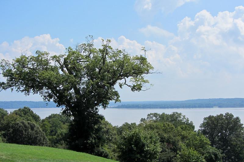 Mount Vernon Potomac
