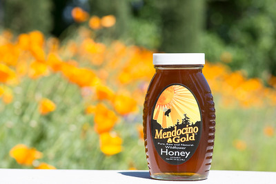 Mendocino Gold Honey